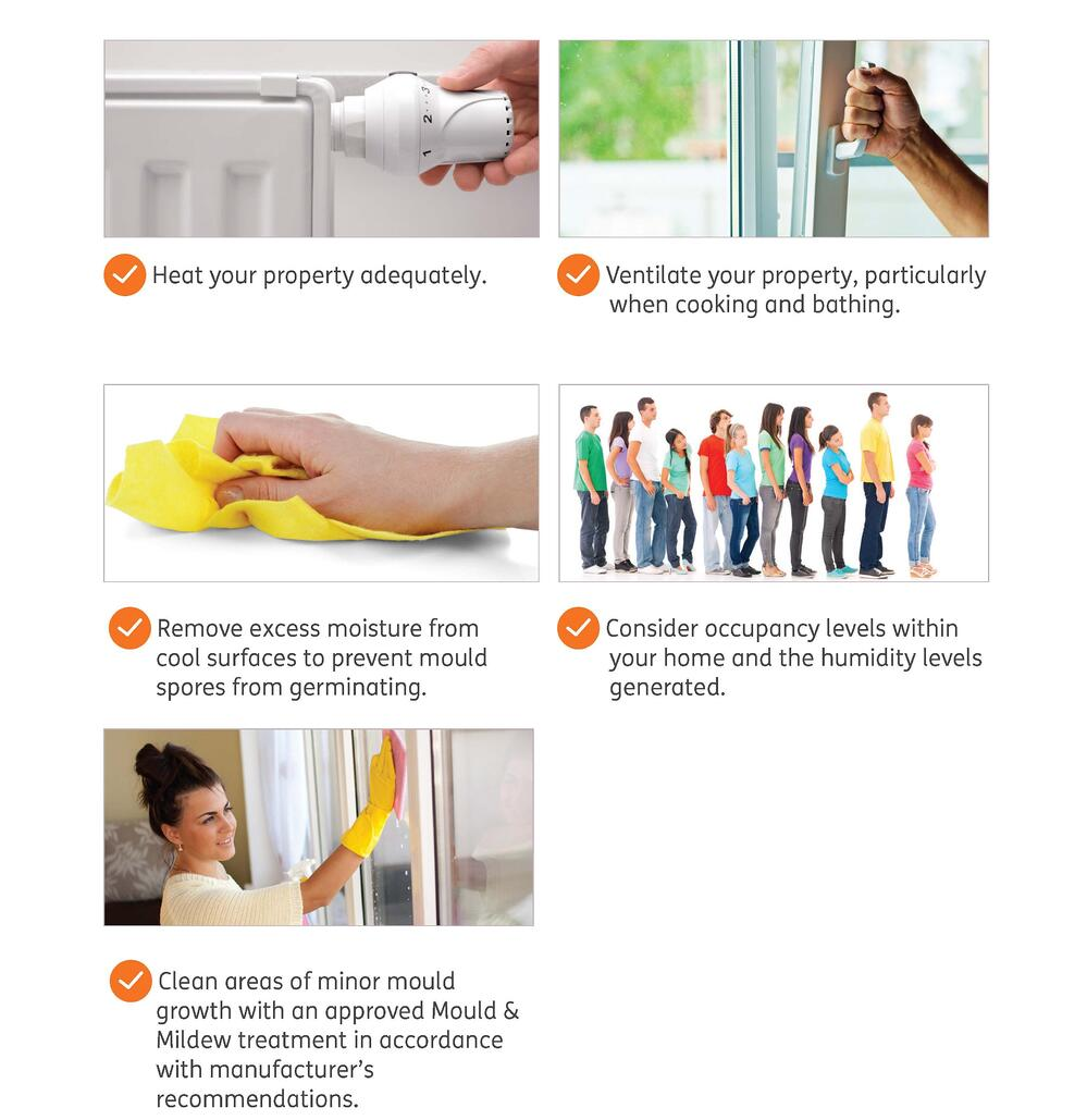Damp and mould - do's