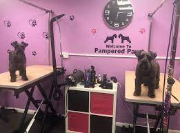 Pampered Paws Dog Grooming Salon & Pet Shop - Home | Facebook